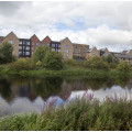 Timber Basin has fantastic views over the Forth & Clyde Canal